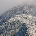 樹氷 DMC-FZ150  P1000259