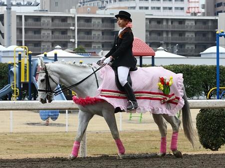 川崎競馬の誘導馬03月開催 チューリップVer-120301-15