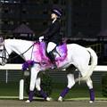 写真: 川崎競馬の誘導馬05月開催 藤Ver-120514-16-large