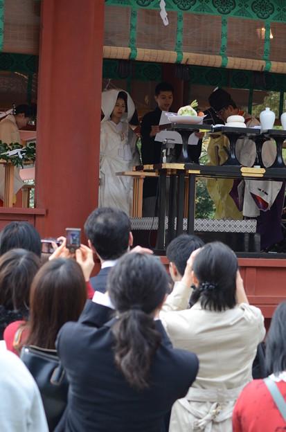 鎌倉 秋日和47