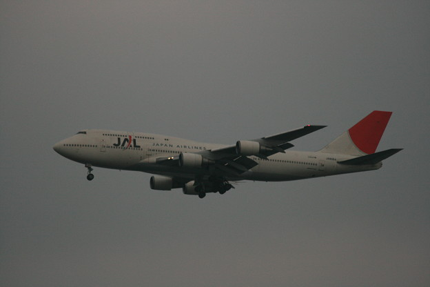JA8084