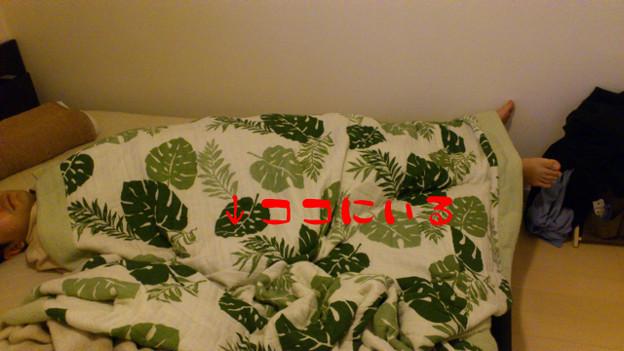 写真: 2011100203