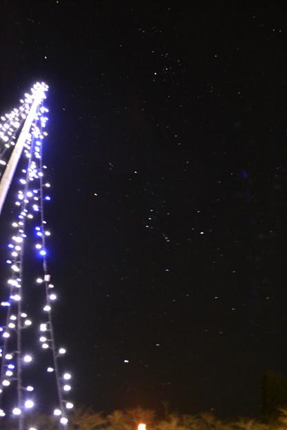 聖夜な星空