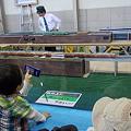 写真: 模型列車