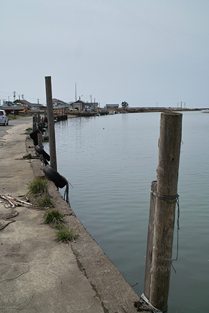 river_mouth04022012dp2