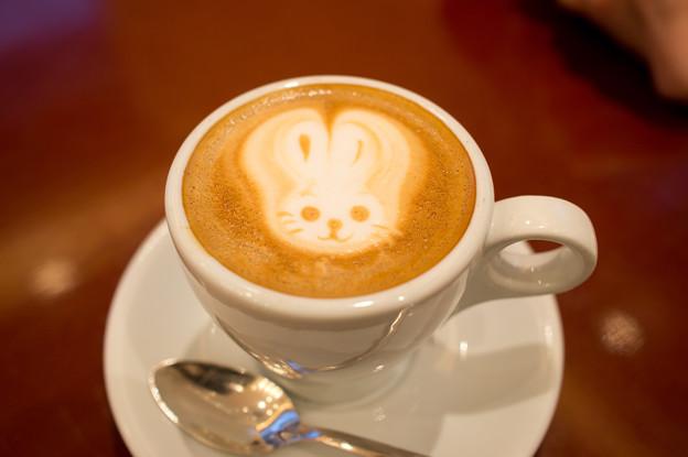写真: ラテアート(ウサギ)