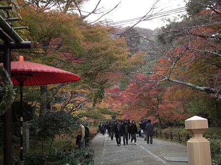 京都 215