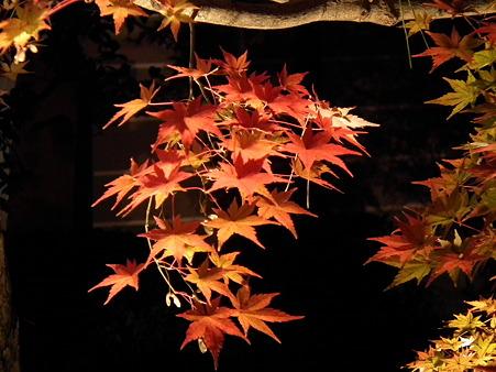 京都 846