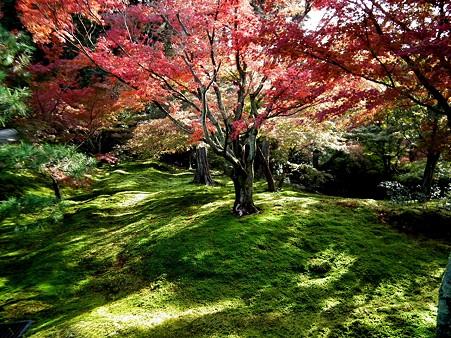 京都2 004