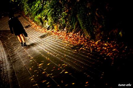 秋色の帰り道