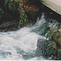 三島市白滝公園