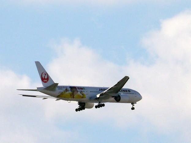 Monster Airline