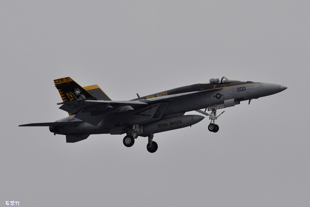 DSC_0099_RJTA_FA-18E
