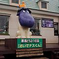 写真: nasu-oukoku120421005