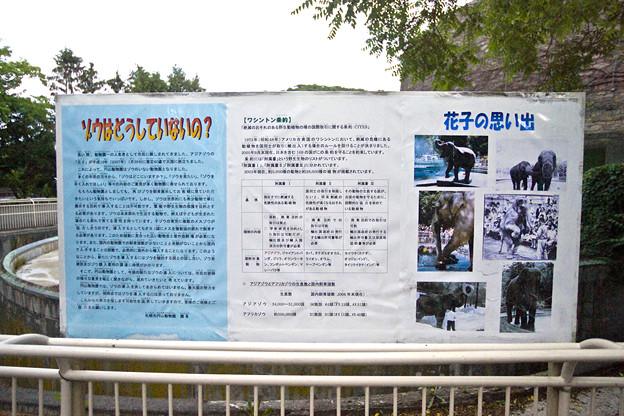 Photos: mauyama110705267