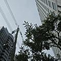 Photos: 2011-03-18の空