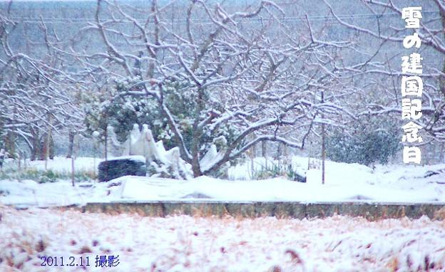 雪の建国記念日