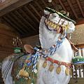 写真: 白山比咩神社