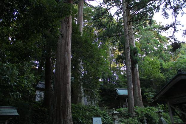 写真: 大瀧神社