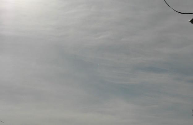 975 春の空