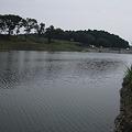 写真: M池
