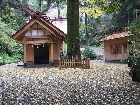 高千穂 秋元神社