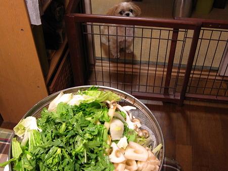 お野菜煮作ってます1