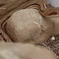 Photos: 足立区生物園(蛇と猫は同じ種だと思う絶対。)
