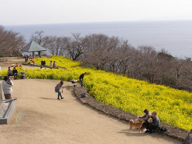 写真: 吾妻山山頂