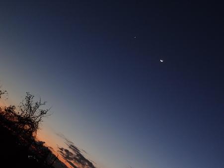 金星と月の大接近