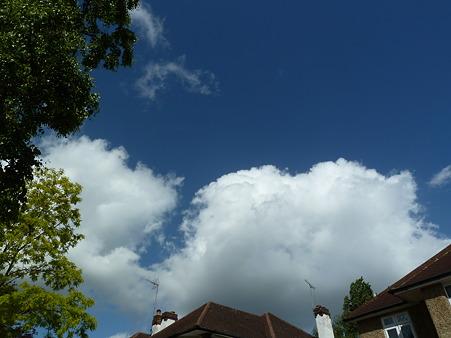 いい天気でした