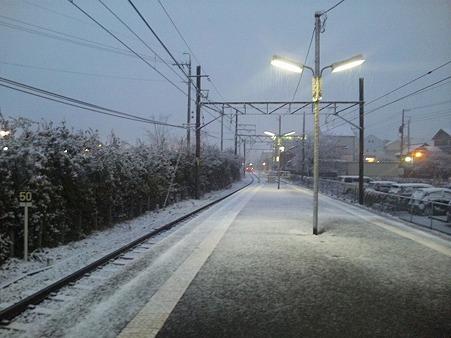 214-新那加雪