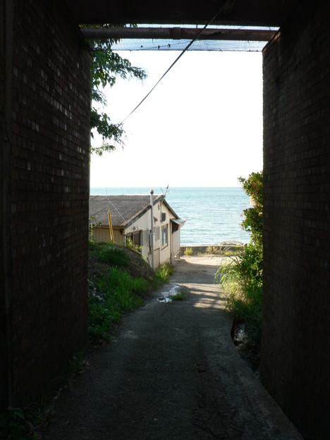 真夏の海へ (2)
