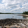 Looking at Harbor