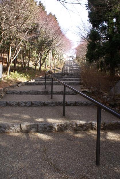 天上寺 階段