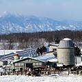 山脈の見える牧場