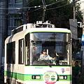 Photos: 荒川線8500形 8503