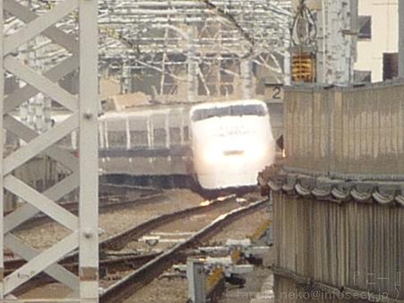 120224-300系(ペイント車) (3)
