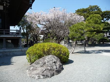 110406-本覚寺 (2)