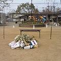 Photos: 町内のどんど焼き・準備中