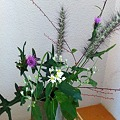 Photos: Ikebana @ Mt.Fuji
