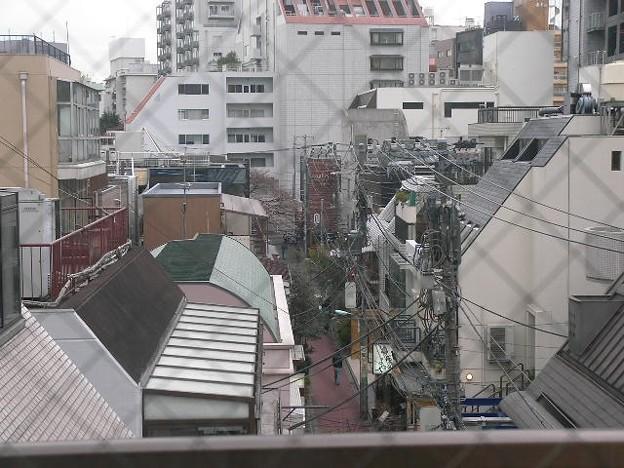 Photos: 060324sakura2