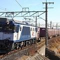 Photos: 1355レ EF64 1020+コキ