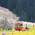 Photos: 小湊鉄道 2012年 春