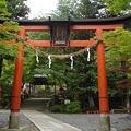鍬山神社(2011.5.)