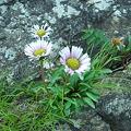 Photos: 20110630_072448