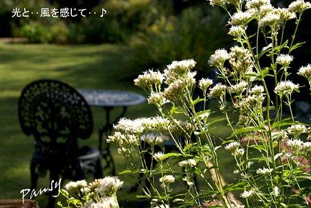 石窯 garden terrace..8