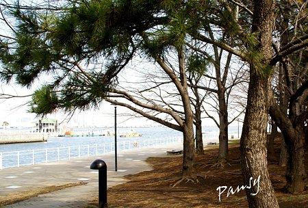 海のみえる風景・・1