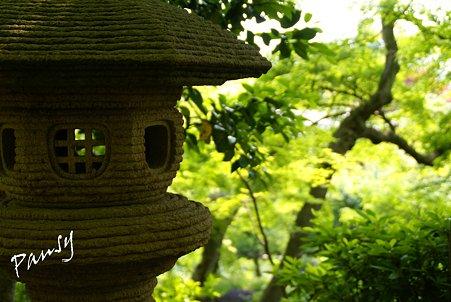 緑に染まる石灯籠・・水無月の長谷寺・・41