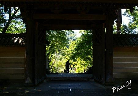 門のフレーム・・長月の円覚寺にて・・7
